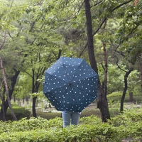 lifestudio 3단 패턴 우산