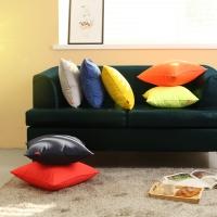 솔리드 쿠션 (Solid Cushion)