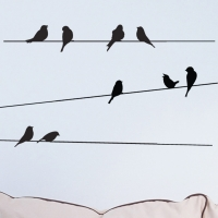 전깃줄과새