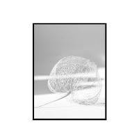 EPOK -NEST (50x70cm) 프레임포함