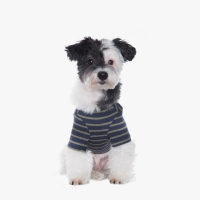 Casual Stripe T-shirt (Navy/Khaki)