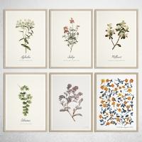 Botanical Flower 유럽산 우드프레임 포스터 원목액자(10종)