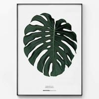 메탈 모던 보태니컬 식물 포스터 액자 몬스테라 나뭇잎