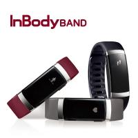 InBody 인바디밴드 체지방 근육량 측정 스마트밴드