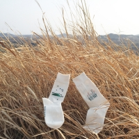[Organic cotton] Jeju artye Oreum