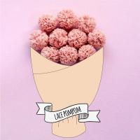 레이스폼폼 핑크 1p