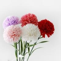 카네이션(soap flower)