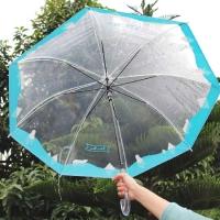 북극곰 투명 우산