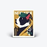 NY DOG - klucystudio x beyond closet