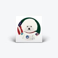 APOLO DOG - klucystudio x beyond closet