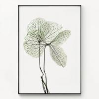 메탈 보테니컬 식물 인테리어 액자 엑스레이 리프 no.1