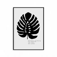 몬스테라 액자 식물 포스터 북유럽 인테리어
