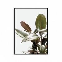 모던 북유럽 거실액자 식물그림 나뭇잎 보타니컬