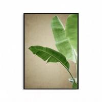 북유럽 인테리어 식물액자 나뭇잎 보타니컬 포스터