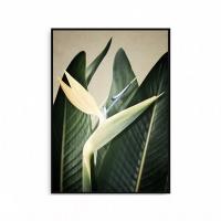 식물포스터 나뭇잎 보타니컬 북유럽 액자