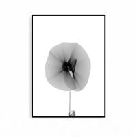 꽃그림 흑백사진 추상화 그림 인테리어 포스터 액자