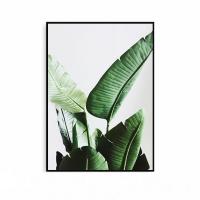 야자수액자 보타니컬 식물 그림 나뭇잎 포스터 대형