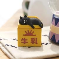 밀크박스위에 고양이 쥬얼리 박스