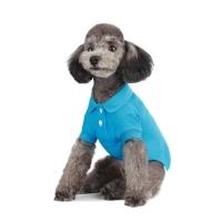 Polo Shirt_Aqua
