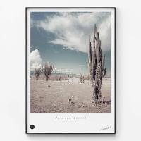 메탈 식물 선인장 풍경 인테리어 액자 Tatacoa desert