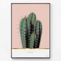 메탈 북유럽 식물 골드 포스터 대형 액자 선인장 패밀리