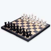 [명인바둑] 대형 자석 교재용 체스 M-480 /보드게임_(1517812)
