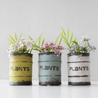 소소한 들꽃 PLANTS 화분 세트