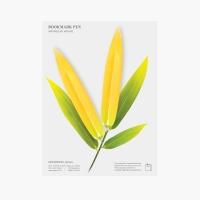 북마크펜_대나무잎(Yellow, 2packs)