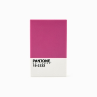 팬톤 카드/명함 케이스(라즈베리로즈)