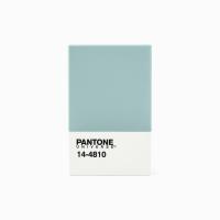 팬톤 카드/명함 케이스(카날 블루)