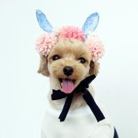 꽃개 바니 헤어밴드 FLOWER BUNNY HAIRBAND