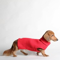 COZY SWEATER_HOT CHILI