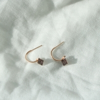 [silver925]lucie earring