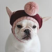 Burgundy Pompom Knit Hat