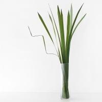 그린 라인 leaf (81cm)