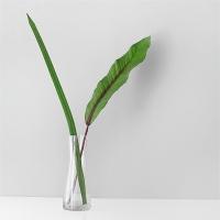 하와이안 & 라인 leaf + 커브 롱 유리병SET