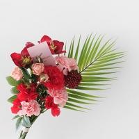 카네이션 & 아레카 꽃다발