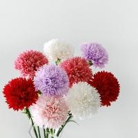 카네이션 비누꽃 1BOX(50P)