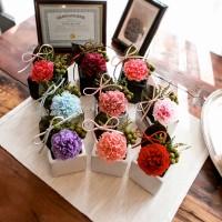 WENDY CARNATION_프리저브드플라워 카네이션(시들지 않는 꽃)