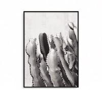 패브릭 식물액자 그림 인테리어 선인장 A2 A1