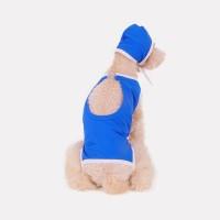 Poolside (blue) 강아지수영복