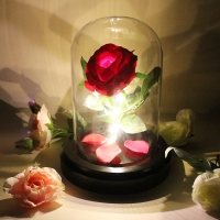 Beauty and the Rose LED