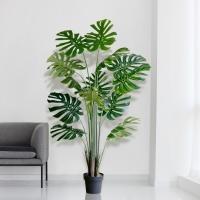 몬스테라 대형 조화 나무(1.7M)