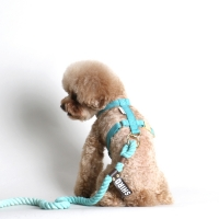 HARNESS + LEASH SET (-10% OFF)