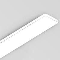 실버라인 LED 주방등 2등 55W [LG이노텍/KS인증]_(1394861)
