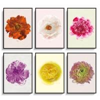 꽃시리즈 인테리어 포스터 액자 6종