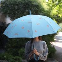 마이 폭스 우산