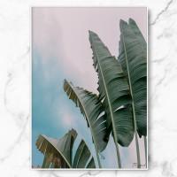 [RYMD] 북유럽 인테리어 액자 그림 선물 바나나 리프