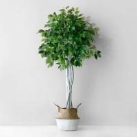 벤자민 인테리어 조화 나무(150cm)