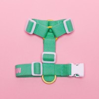 [한정판] MINT HARNESS
